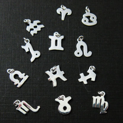 Wholesale Sterling Silver Zodiac Horoscope Charms, Charms and Pendants for Jewelry Making, Wholesale Findings
