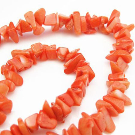 Picture for category Coral Beads