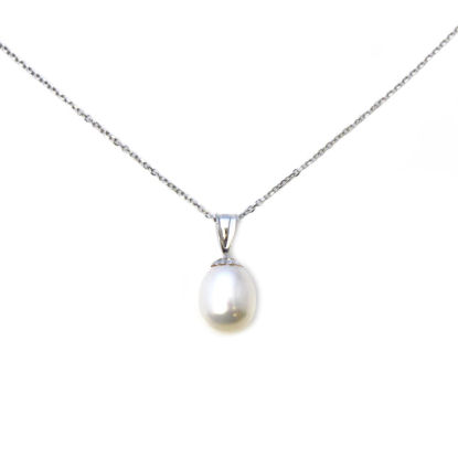 Wholesale 14K White Gold Simple White Teardrop Freshwater Pearl Necklace