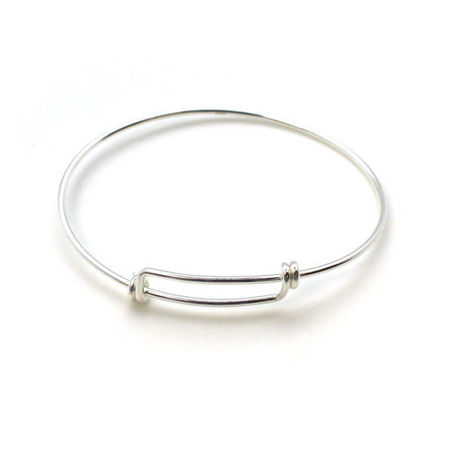 Picture for category Bangle